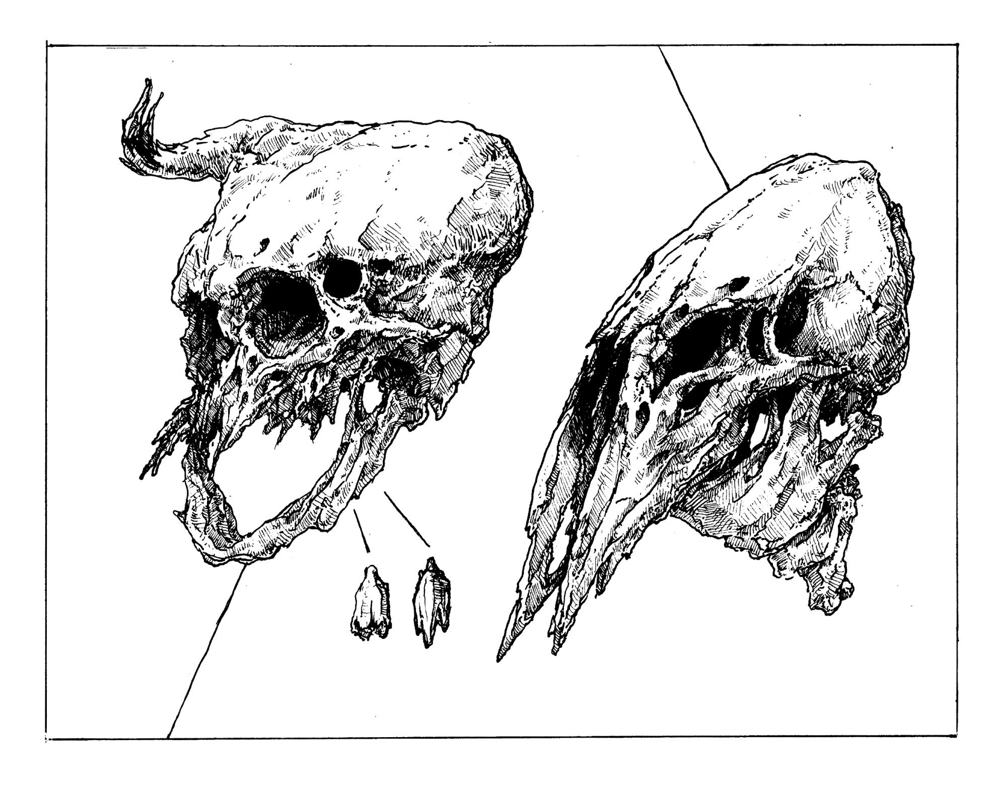 skulls aliens.jpg