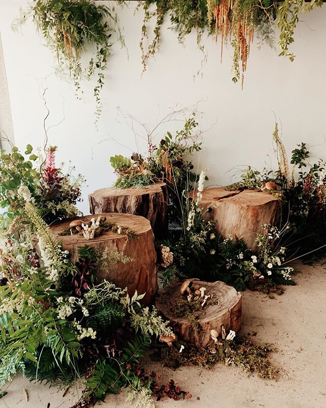 bts shot of the forest install done for @hirumstudios open house where we got to play magical forest nymphs too 🌿 studio: @hirumstudios creative director: @cachaej