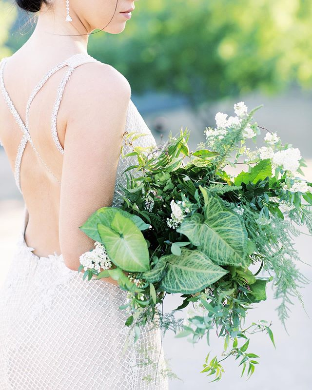 "a different take on ""all greenery"" for this bouquet. we added arrowhead vine, usually a houseplant- it added interest and a different texture to this bouquet. 🌿 captured by the talented @andrewandada  Venue: @venueonwashington Planning & Design: @mandymariecrative Linens: @latavolalinen Floral: @thewildfloweraz Lighting: @divinitylighting Rentals: @glamourandwoods Beauty: @seventhavebeauty Heirlooms: @the_mrs_box Tabletop: @theconfettistudio Gown: @lazarobridal Headpiece: @mariaelenaheadpieces Jewelry: @edmarshalljewelers Stationery: @rbkilloran Model: @taylornoelle Calligraphy: @theycallmespindles Featured On: @theperfectpalette"