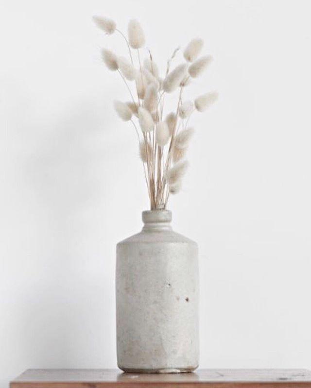N E U T R A L S 🌾 . . . #neautrals #plants #scandi #scandiinterior #scandinavianstyle #vase #ceramics #home #homeware