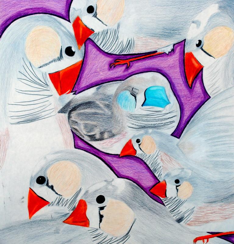 Student Work: Advanced and AP Studio Art
