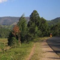 On the Bank of the Akanyaru River   - Rwanda, 1994