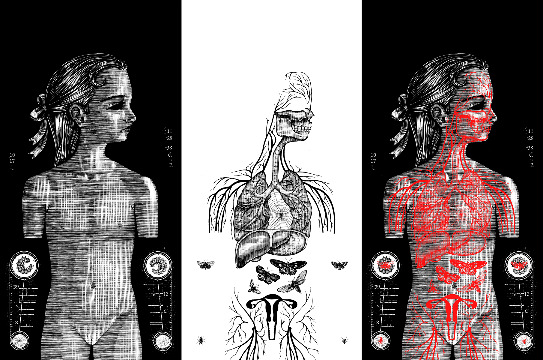 Oneiroid Psychosis,  Fantasies About Illness.  Inside booklet.  1996. Pen and ink, Scratch board. Left- Base drawing. Middle- Overlay drawing. Right- Composite: overlay drawing printed in red on Mylar film. Released by Decibel Records.