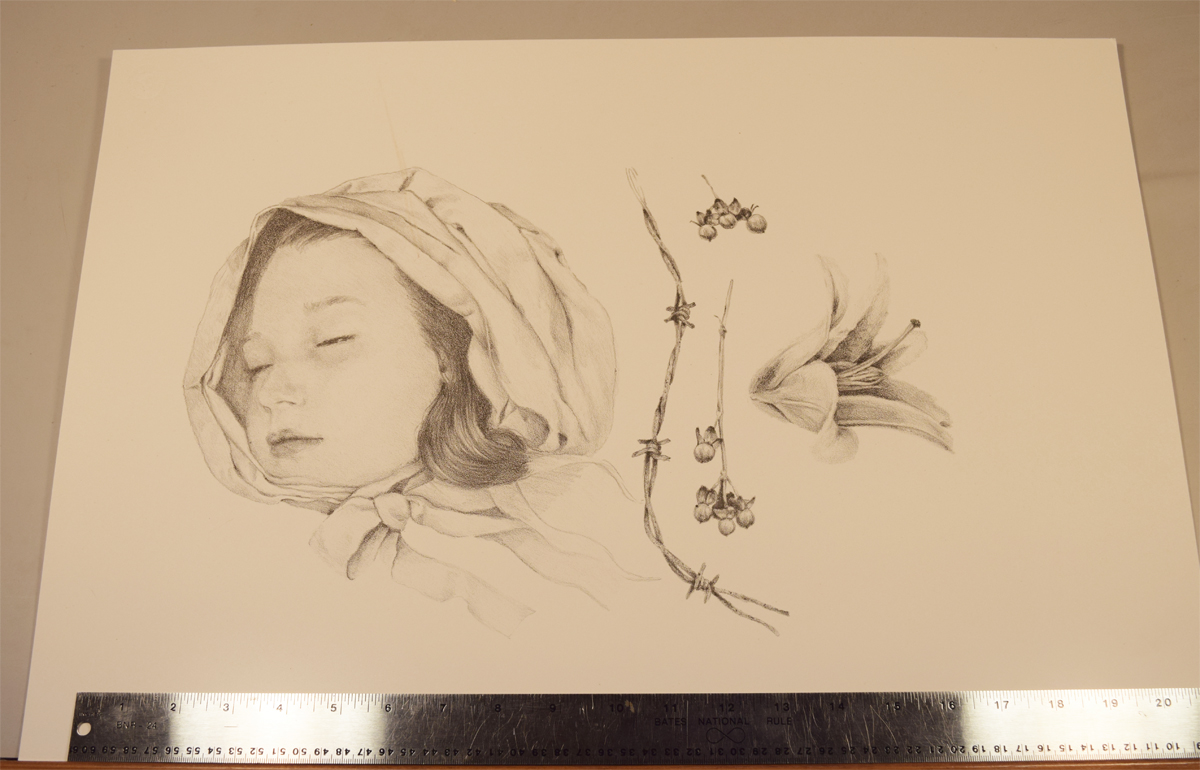 The lithograph print, ready to be painted and cut out. The lily wasn't included in the final print, as I liked the roundness of the head with the linear berry stalks and barbed wire. Printed by Barry Roal Carlsen.