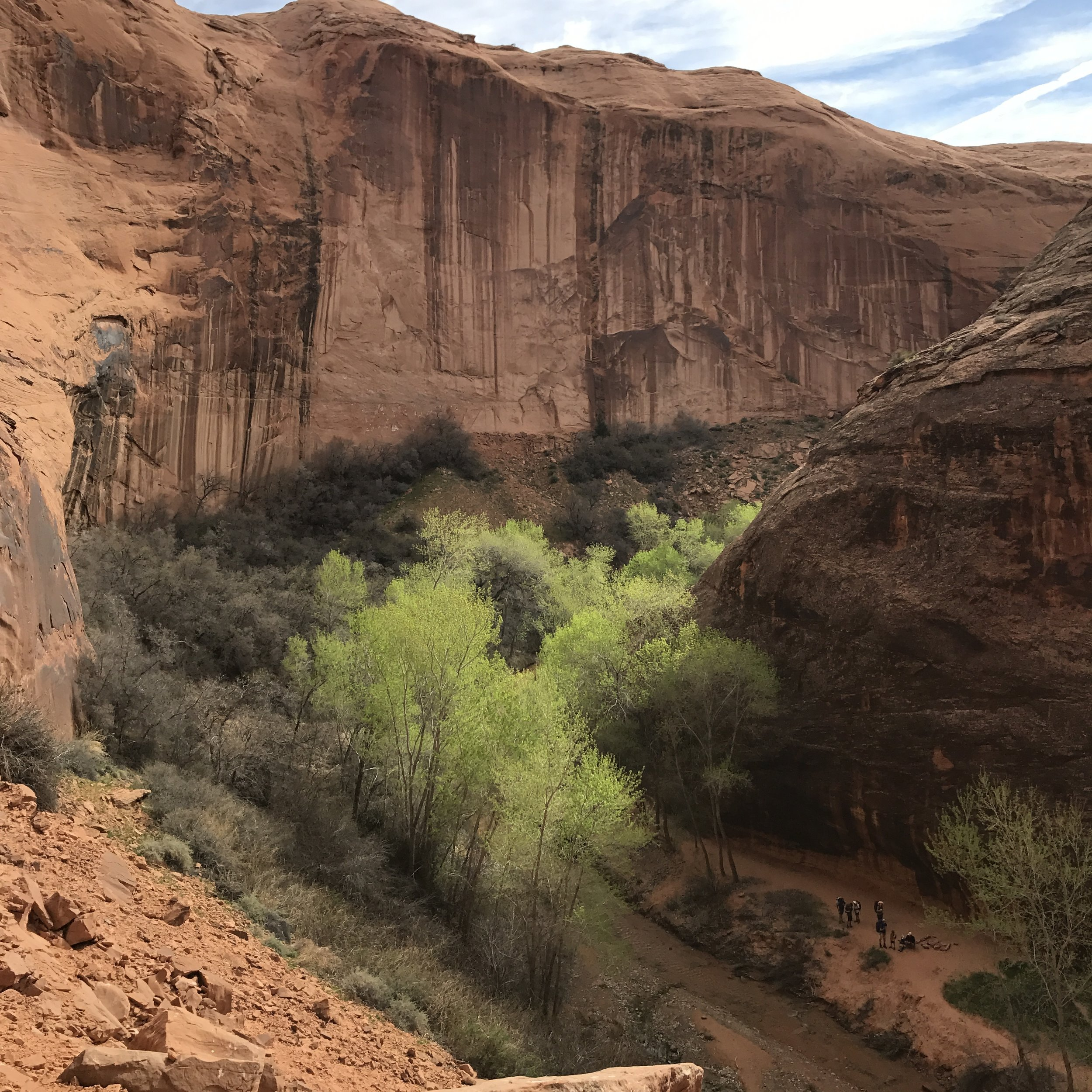 A view looking East into Coyote Gulch from the top of Jacob Hamblin Arch