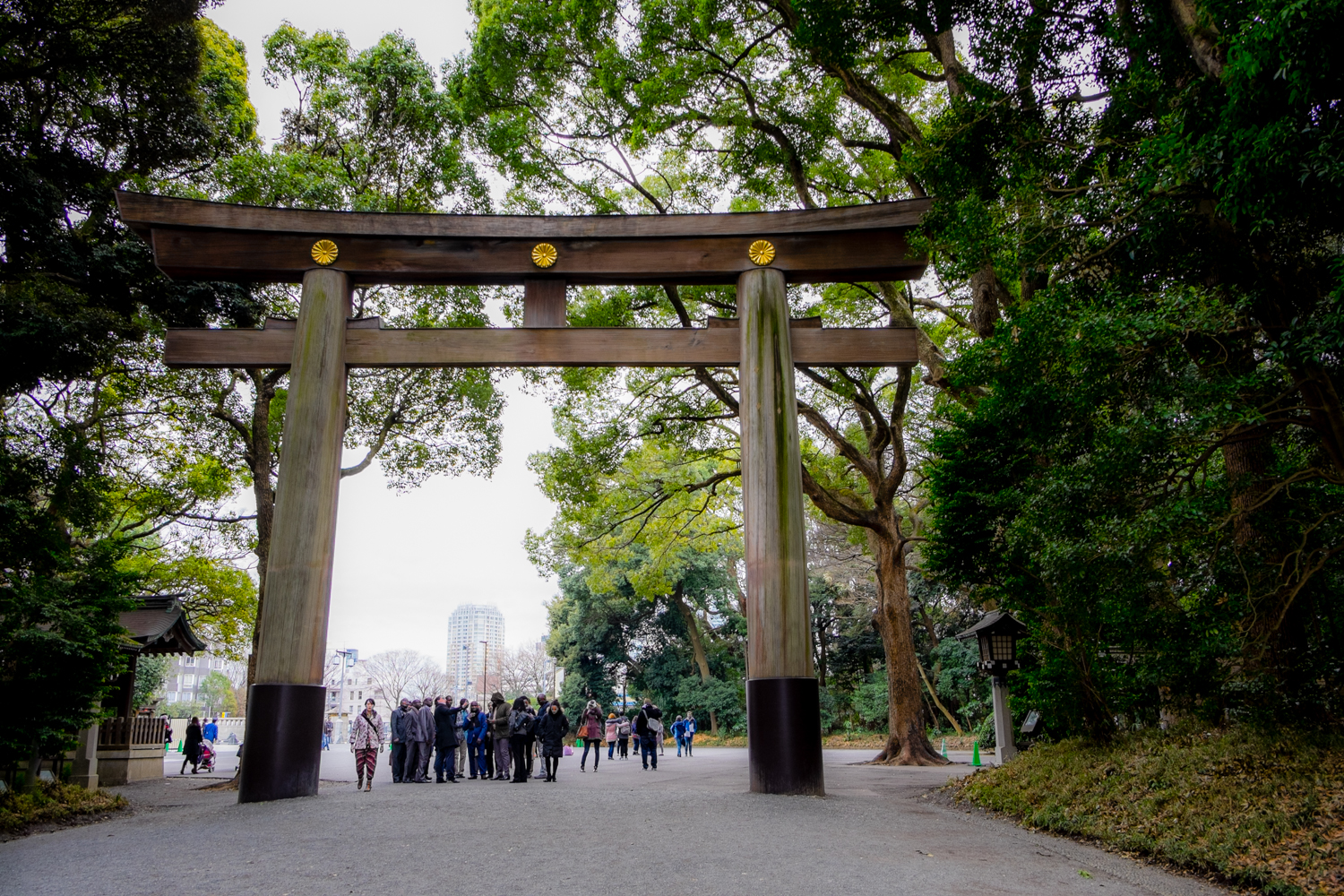 One of the massive gates at the entry to Yoyogi Park