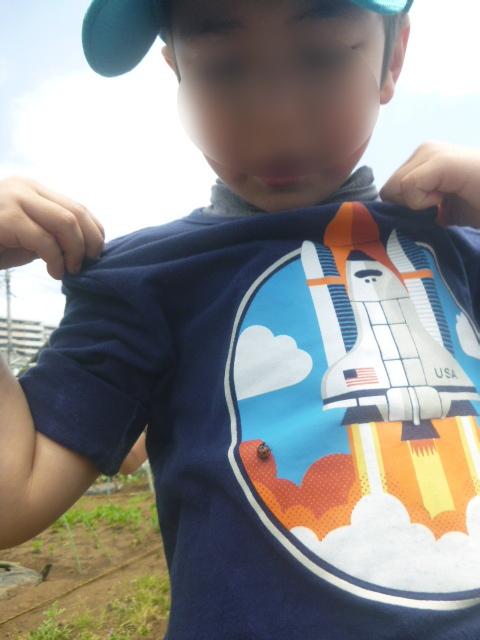 BKI-Preschool:farm1-ladybug-rocket(BLUR).jpeg