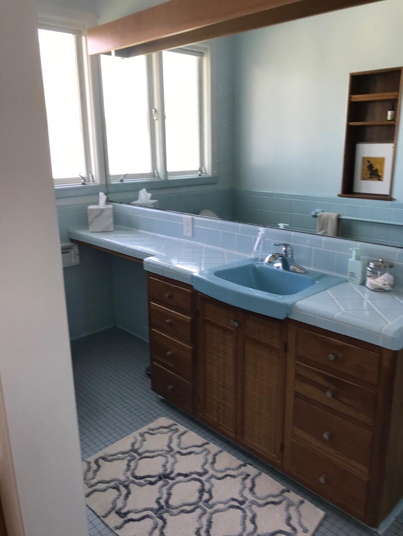 1 MASTER BATHROOM STUDY IN BLUE.jpg