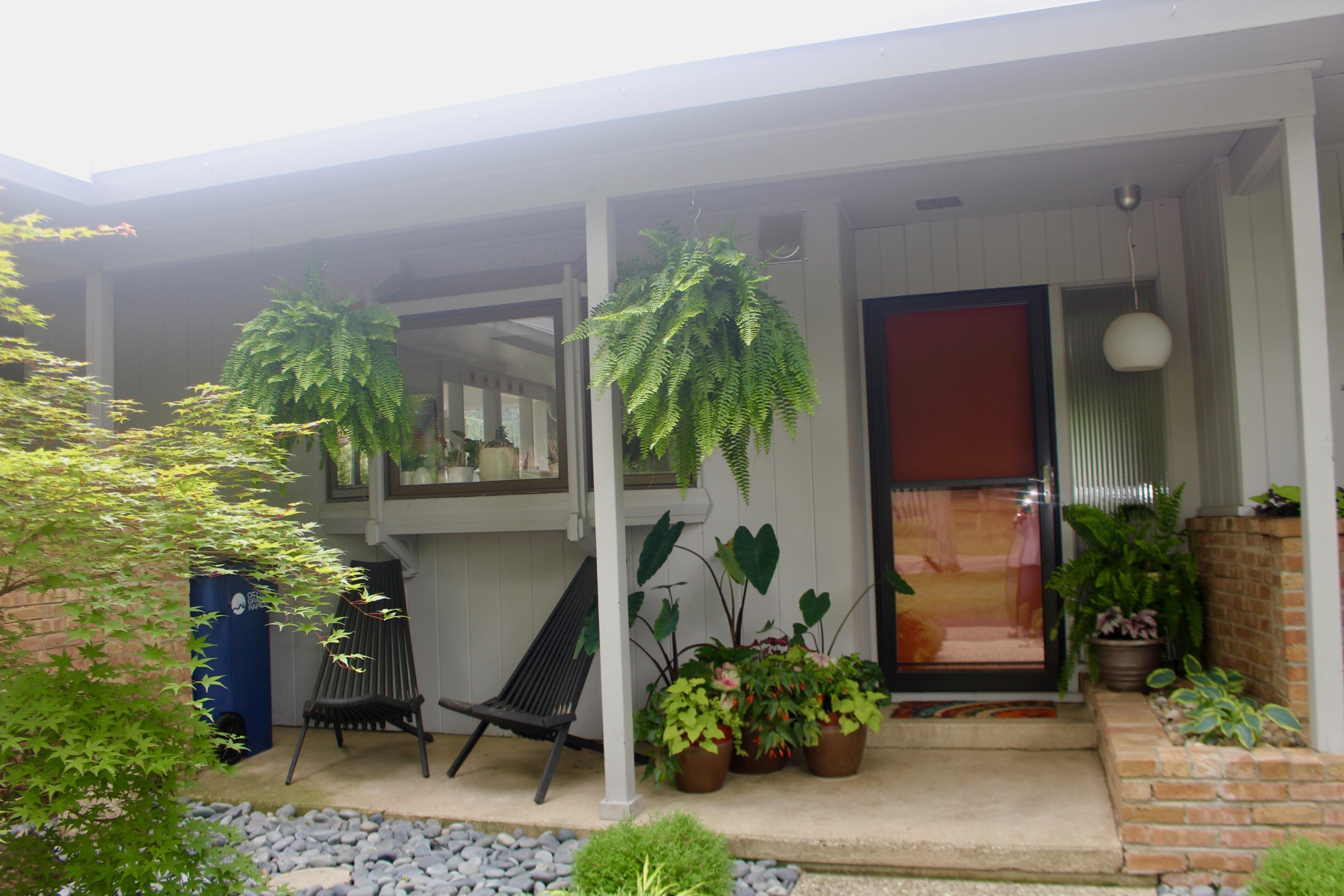PORCH PLANTINGS AND MODERN LIGHT