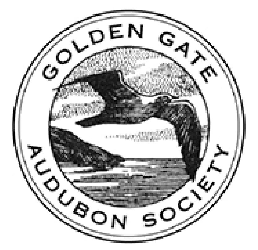 golden-03.jpg