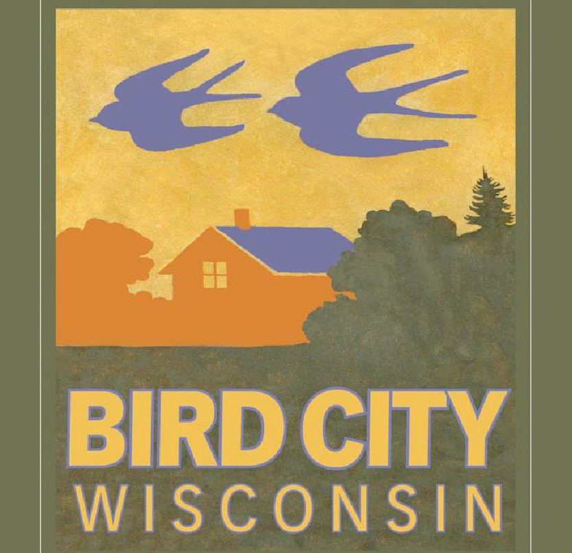 birdcity-03.jpg