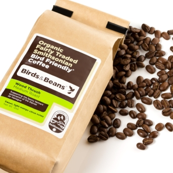 Wood Thrush, Medium Roast Bird Friendly Coffee
