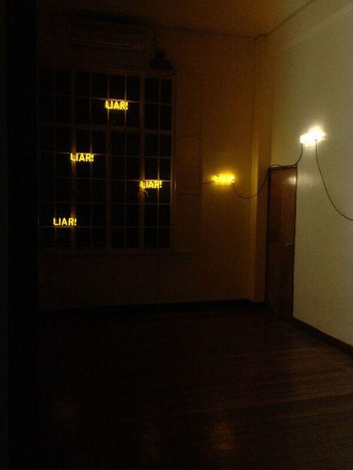 installation view: LIAR! , 2010