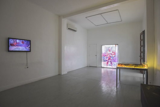 Installation view, artworks by: Leeroy New