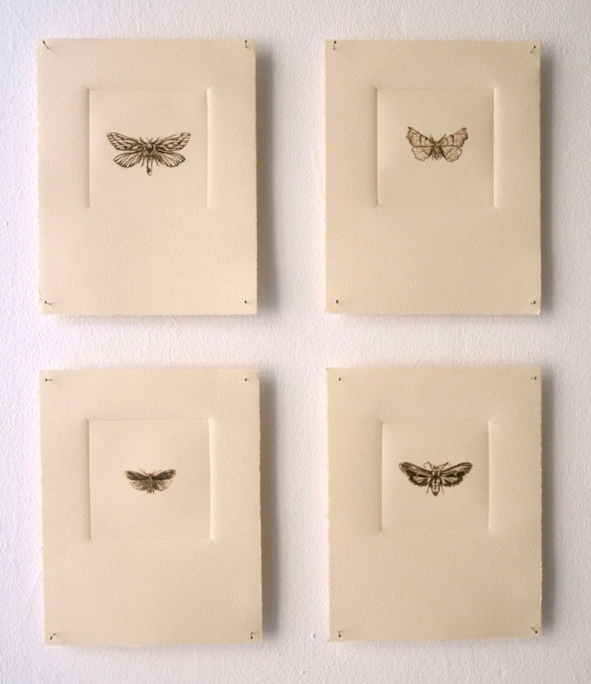 From the folio of 40 prints:  Genus , 2009. Drypoint on plexiglass. 3 x 3 inches each.