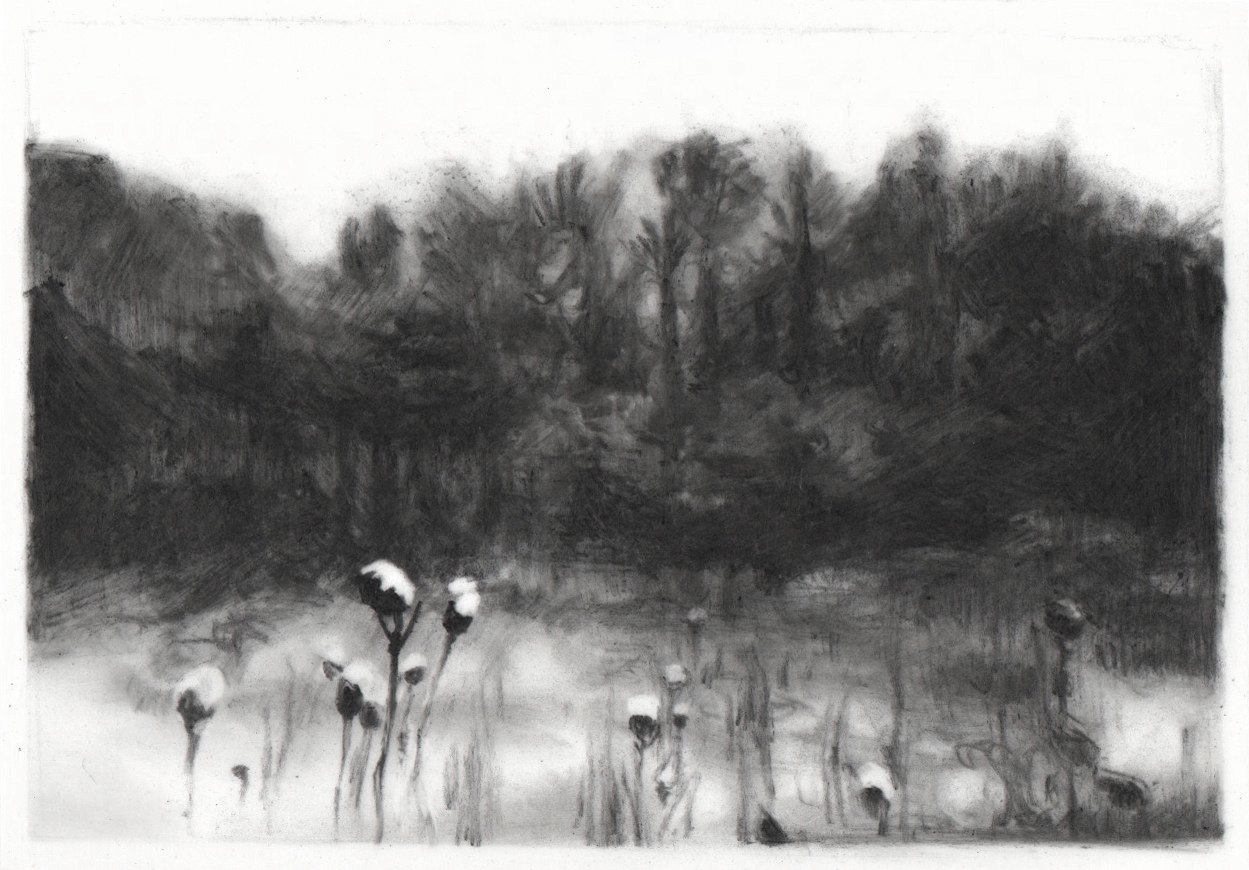 For Homer , 2013. Charcoal on mylar.2.5 x 3.5 inches. Private collection.