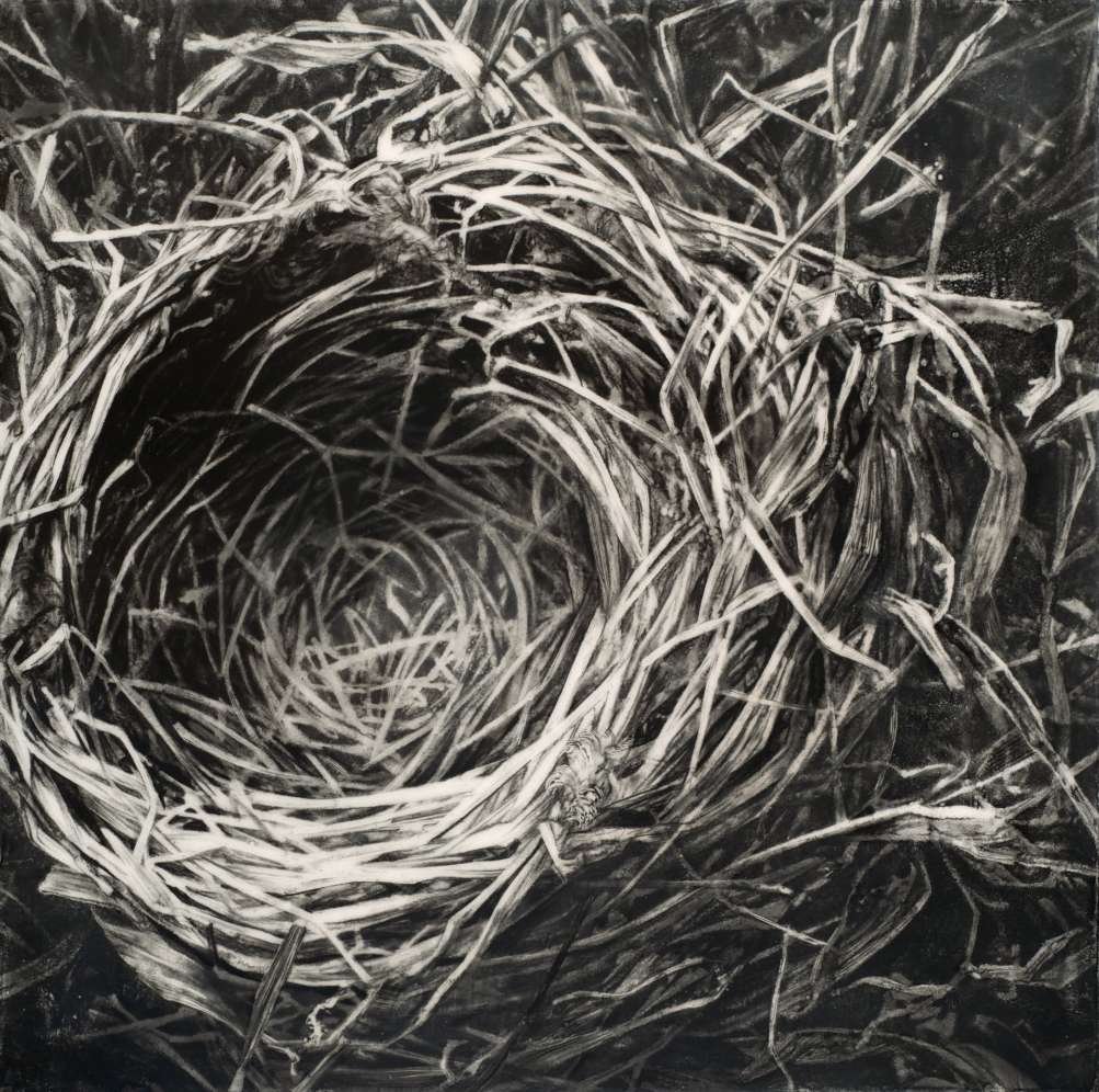 Instinct II , 2013. Encaustic and charcoal on panel.14 x 14. Private collection.