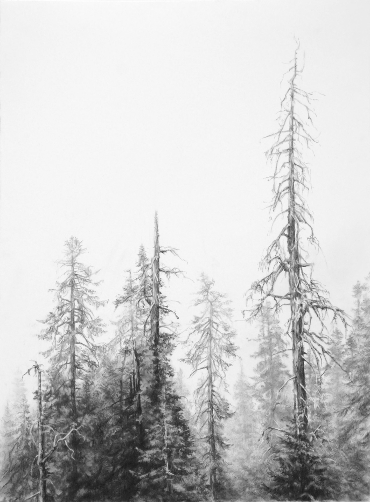 Neighbors of Fire , 2012. Charcoal on paper.29.5 x 22 inches. Private collection.