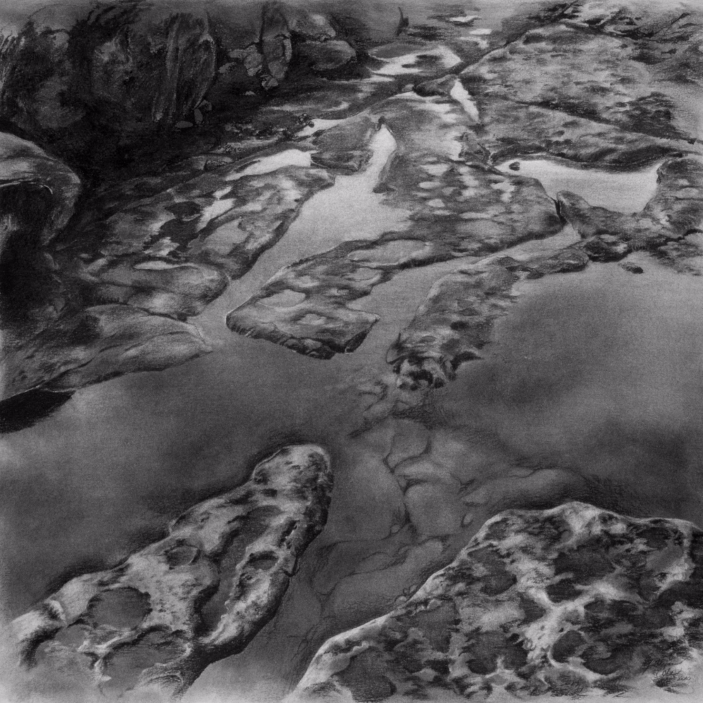 Intertidal , 2010. Charcoal on paper.18 x 18 inches.  Available