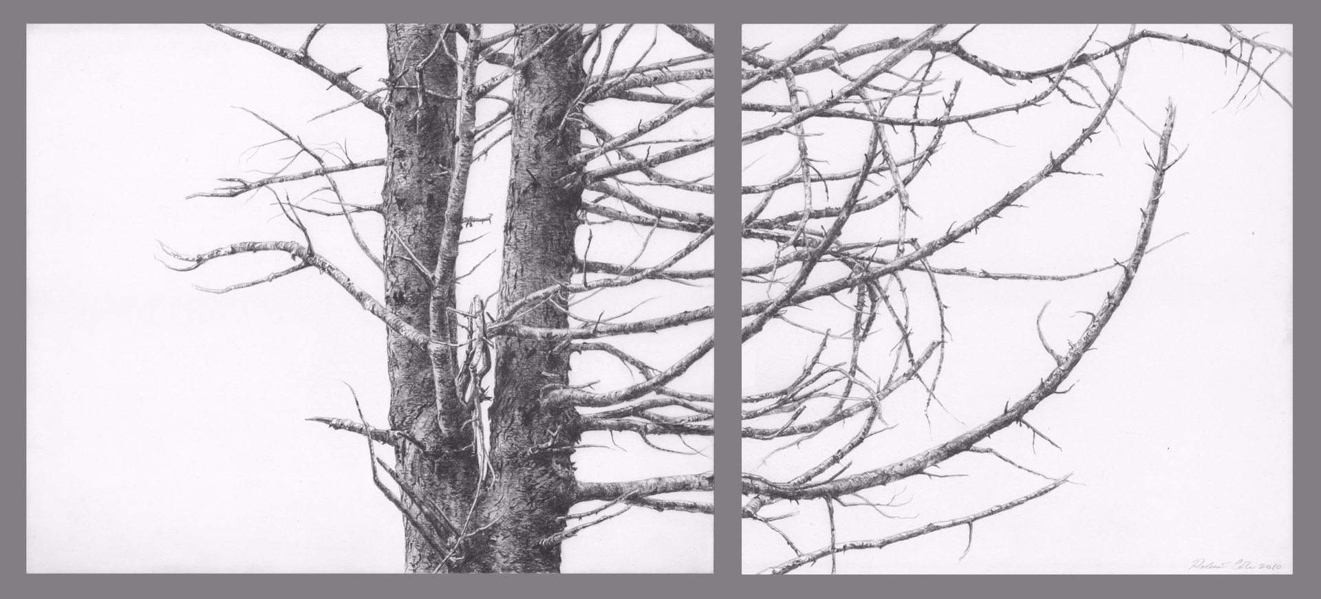 Diverge , 2010. Graphite on clayboard. Diptych: 8 x 10 and 8 x 8 inches. Private collection.
