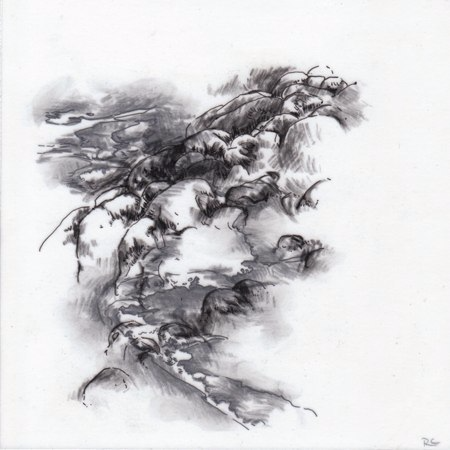 Observations IV, 2010. Ink and charcoal on mylar.5 x 5 inches. Private collection.