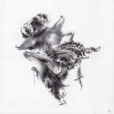 Observations I,  2010. Ink and charcoal on mylar.5 x 5 inches. Private collection.