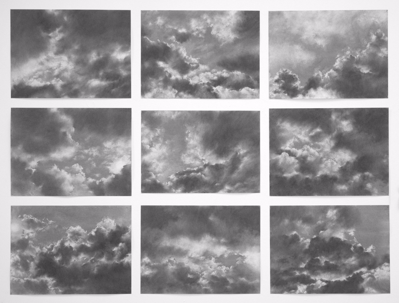 Nine Studies , 2009. Charcoal on paper.17 x 23 inches each.  4 of 9 available.