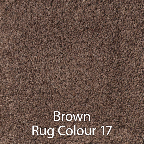 Brown Rug Colour 17.jpg