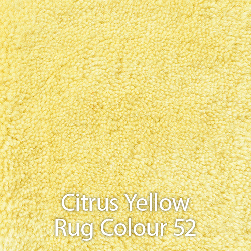 Citrus Yellow Rug Colour 52.jpg