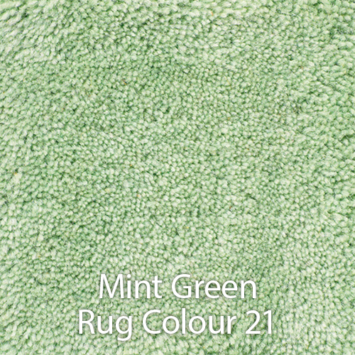 Mint Green Rug Colour 21.jpg