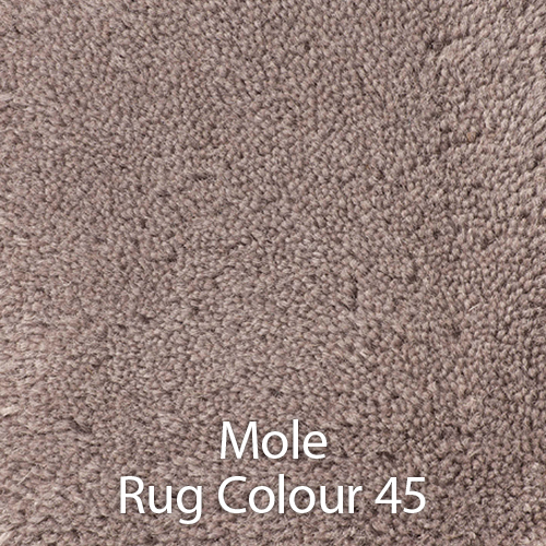 Mole Rug Colour 45.jpg