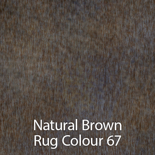 Natural Brown Rug Colour 67.jpg