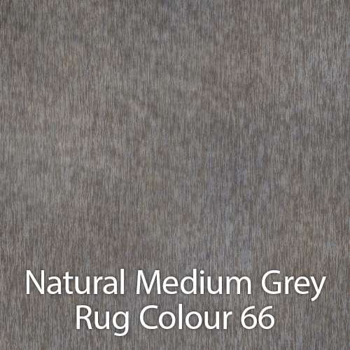 Natural Medium Grey Rug Colour 66.jpg