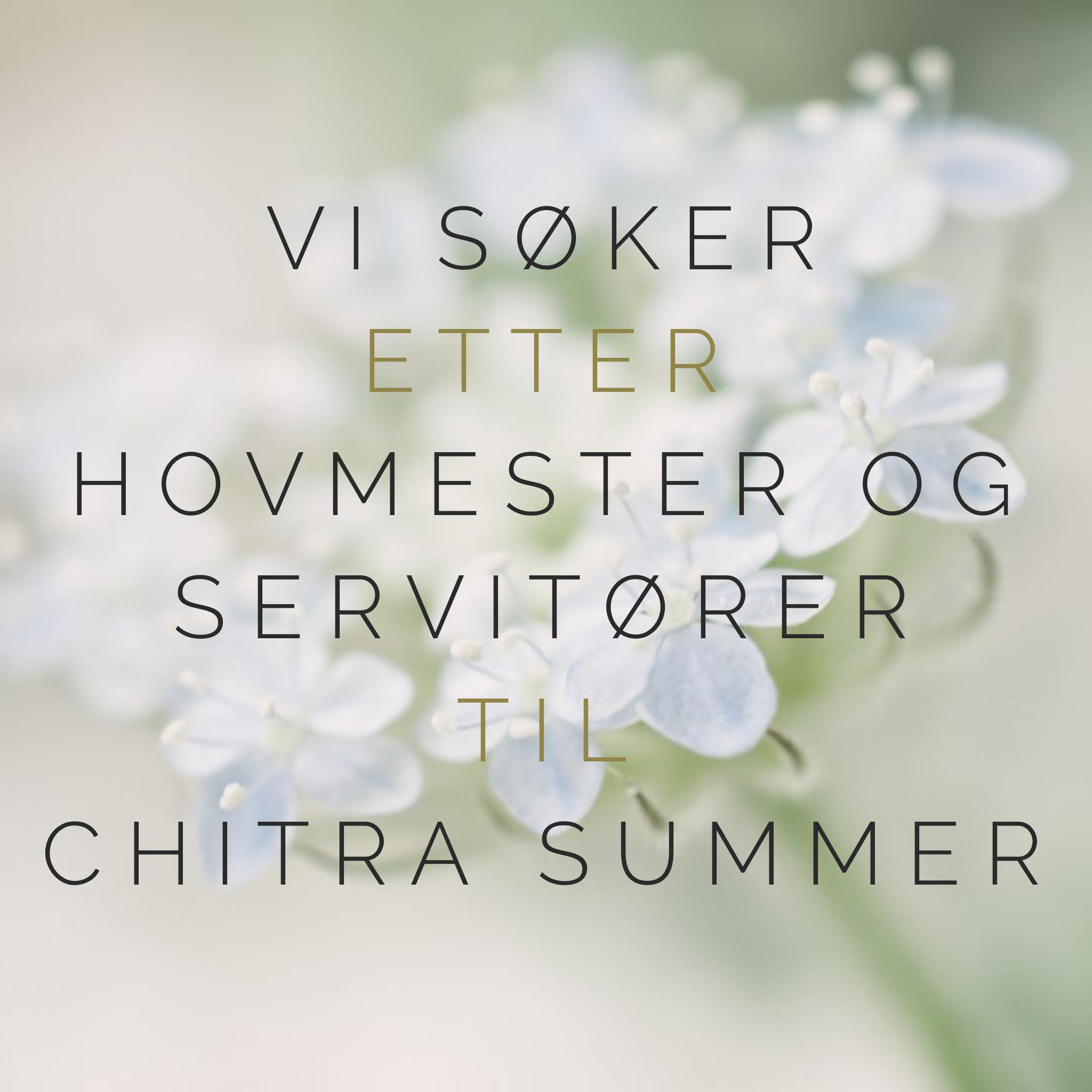 servitører chitra summer.png