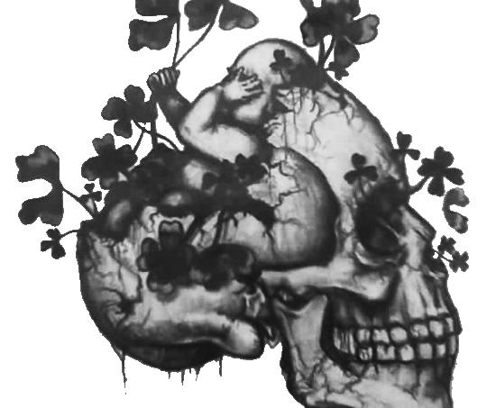 irish skull.jpg