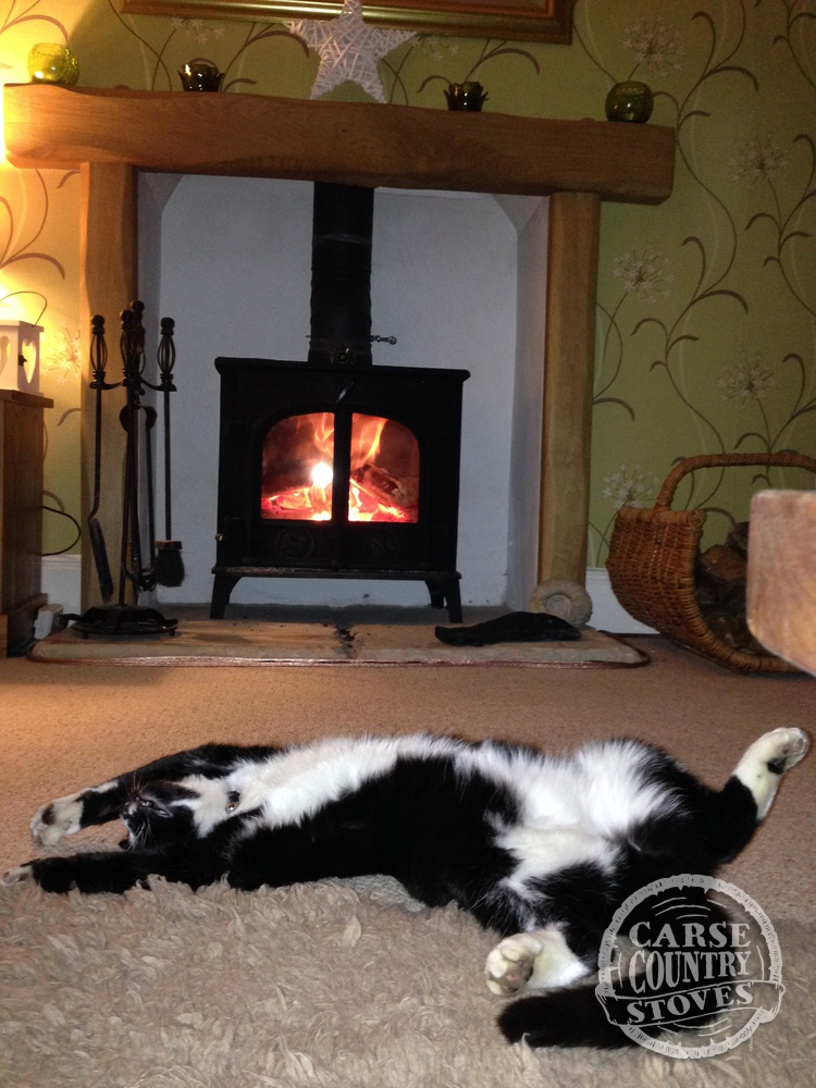 Carse Country Stoves IMG_2771.jpg
