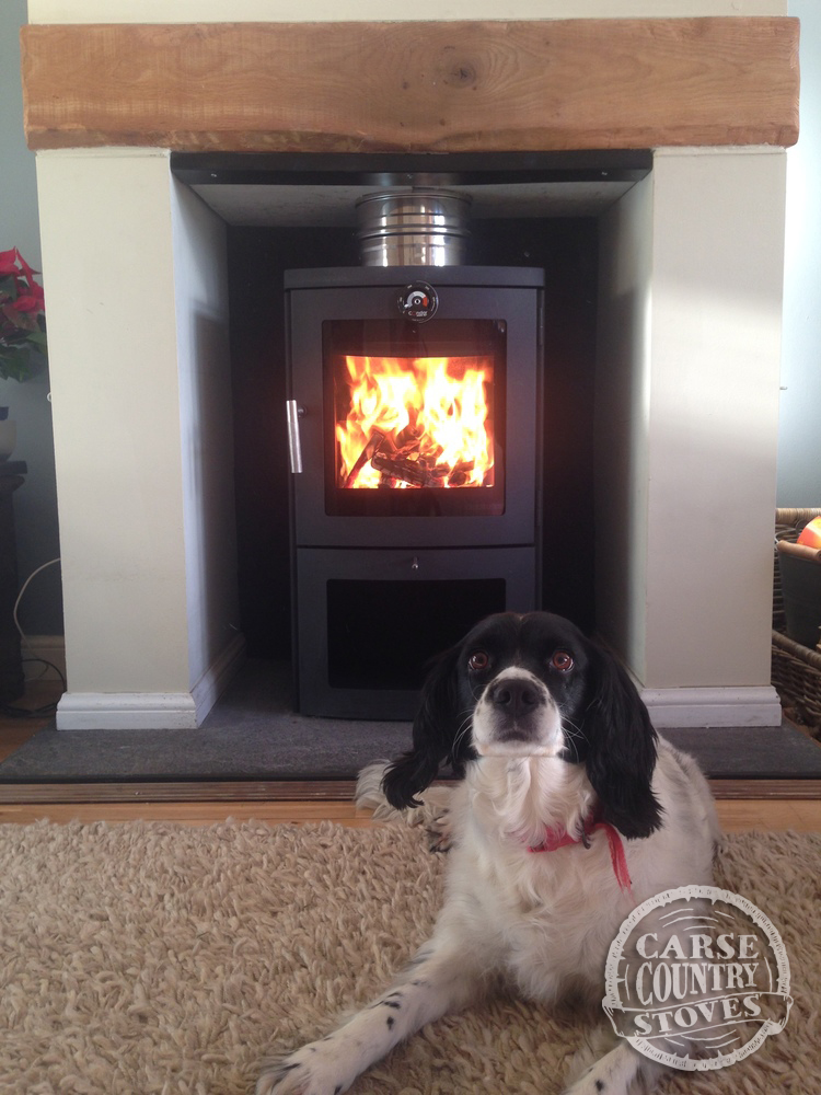 Carse Country Stoves IMG_4133.jpg