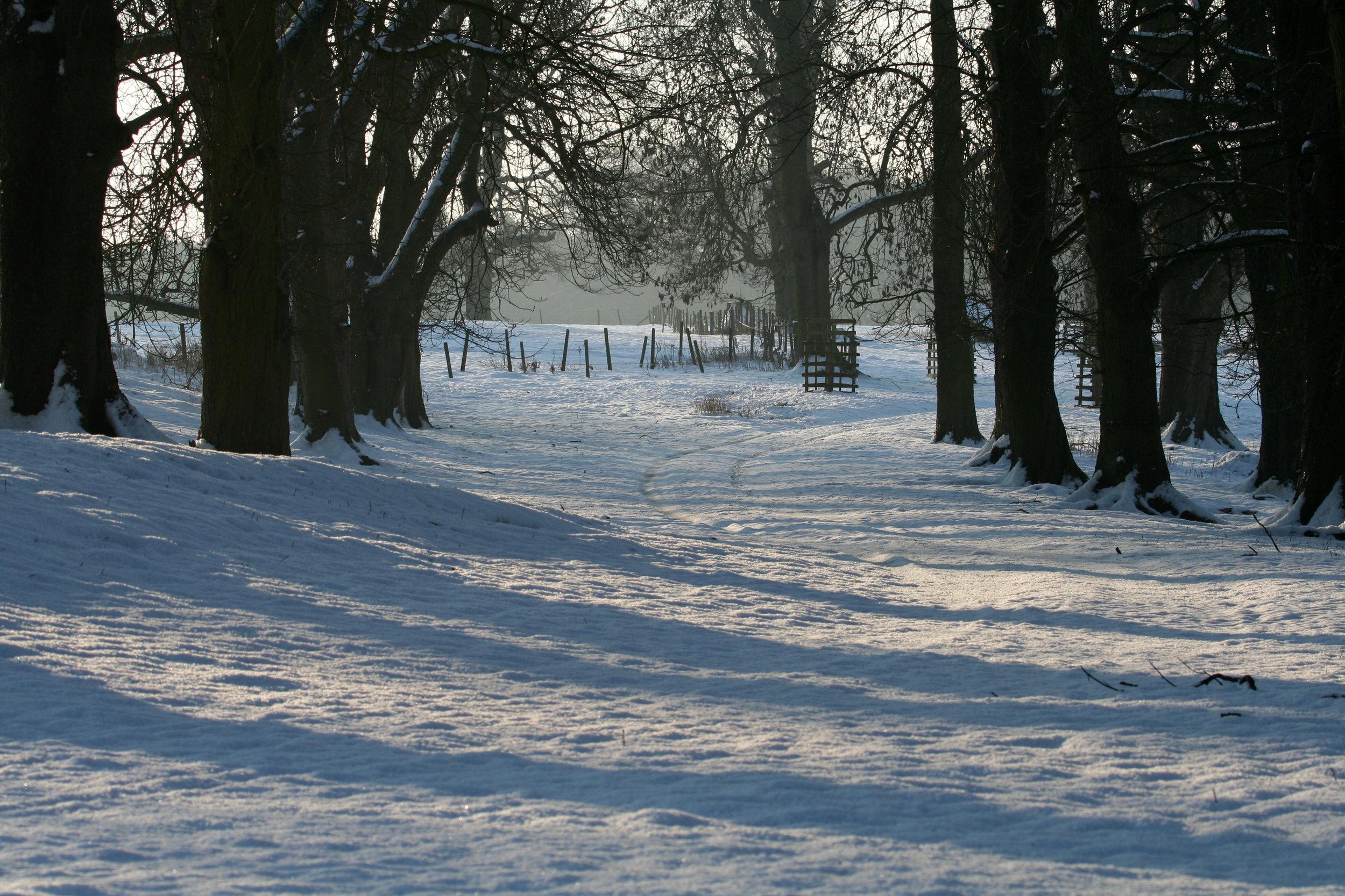 Winter in Easton Park