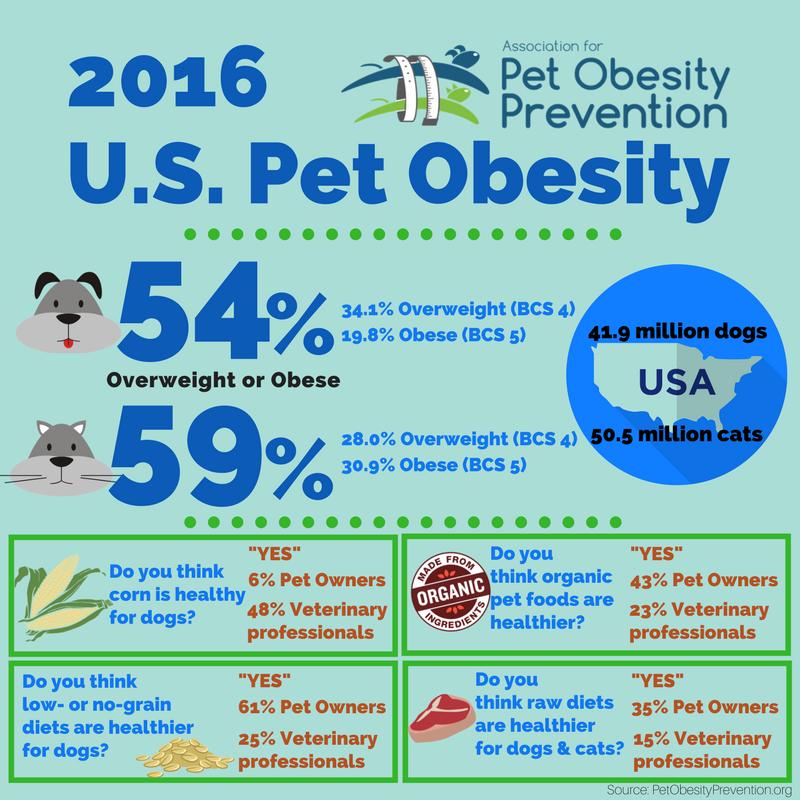 2016 U.S. Pet Obesity Infographic