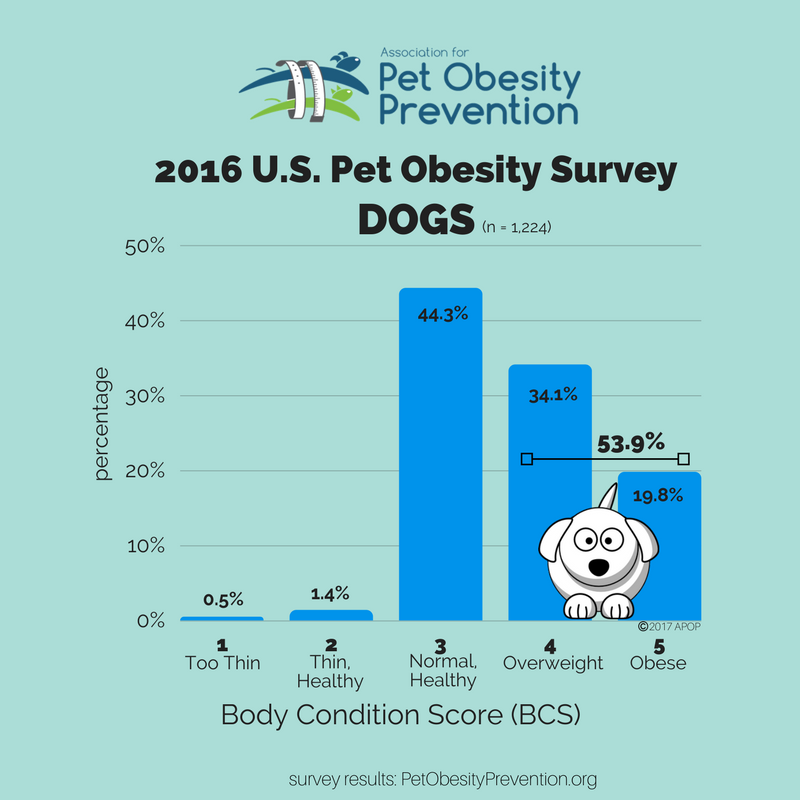 2016 U.S. Dog Population Survey Overweight and Obese
