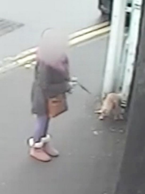 Woman-hands-herself-in-after-video-of-her-letting-dog-mess-in-town-goes-viral.jpg