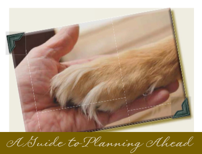 A Guide to Planning Ahead -