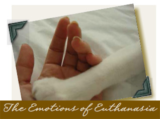 The Emotions of Euthanasia -