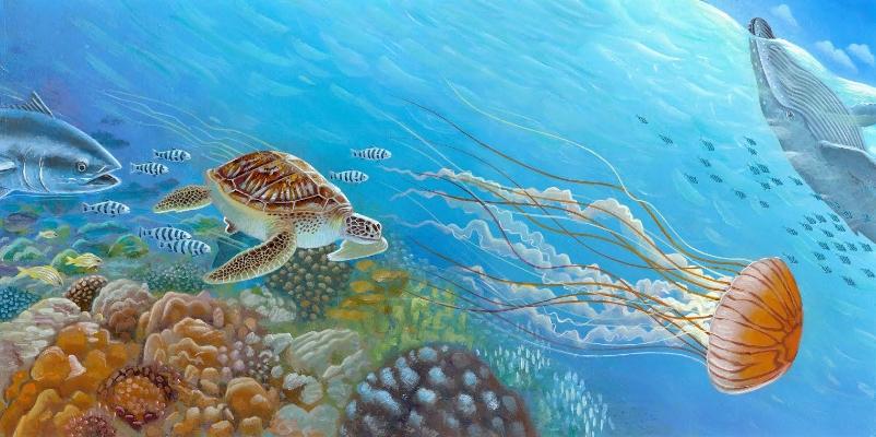 turtle jellyfish.jpg