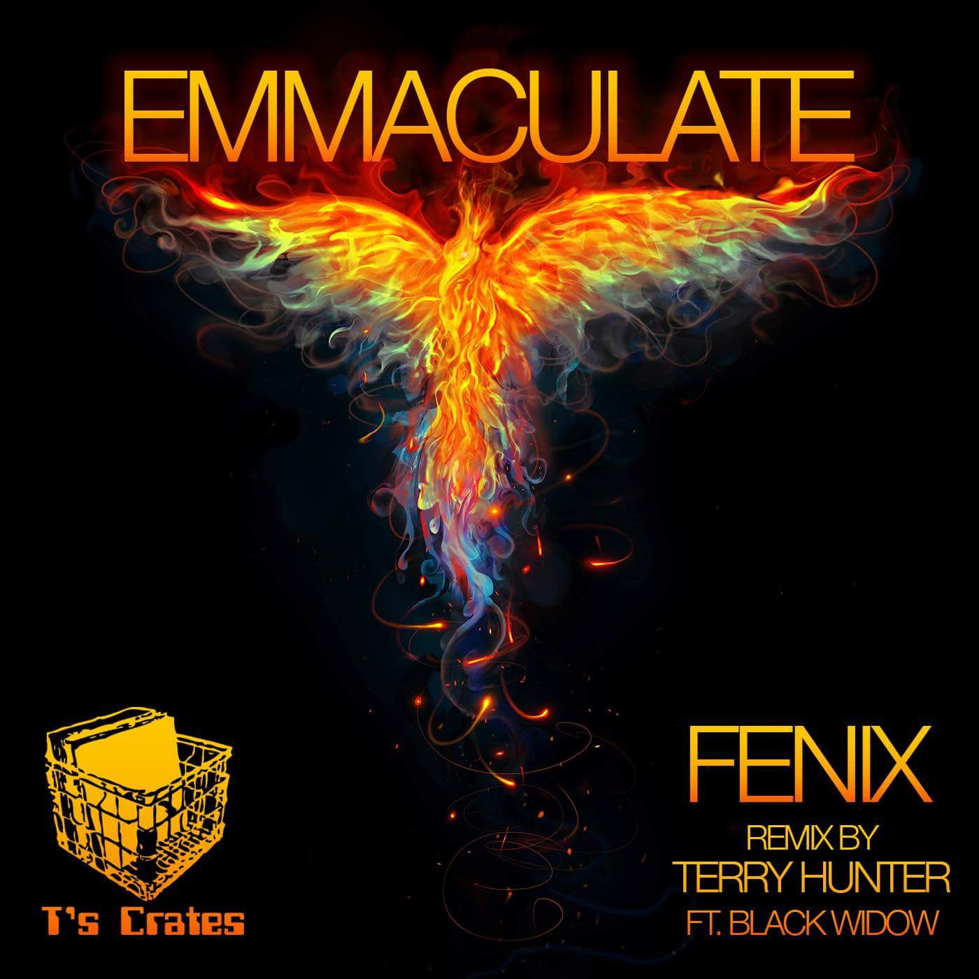 AVAILABLE NOW! - Emmaculate with Remix by Terry Hunter Ft. Black WidowAvailable on Traxsource!!!