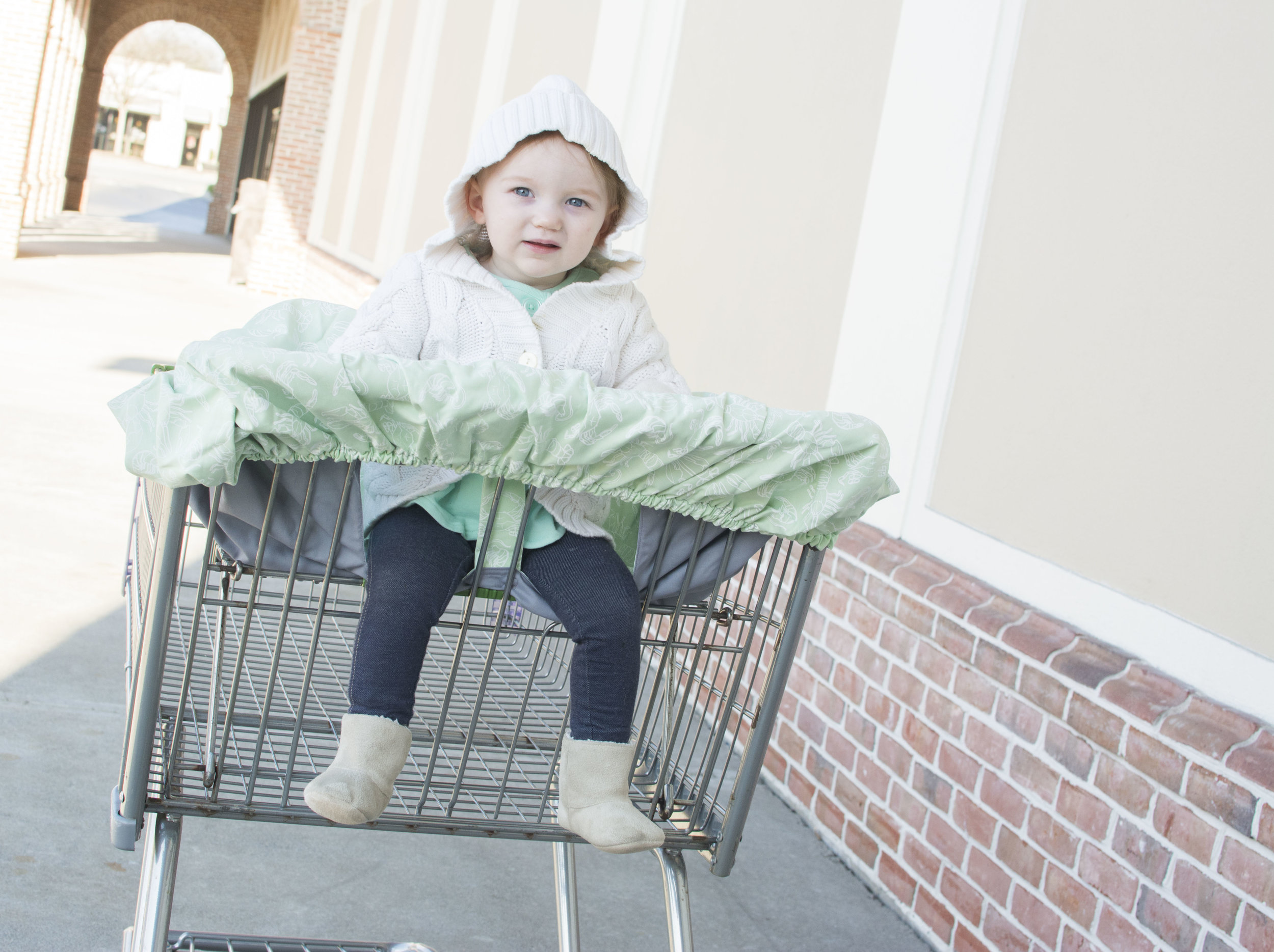 Pictured: Moss & Marsh  Shopping Cart Cover