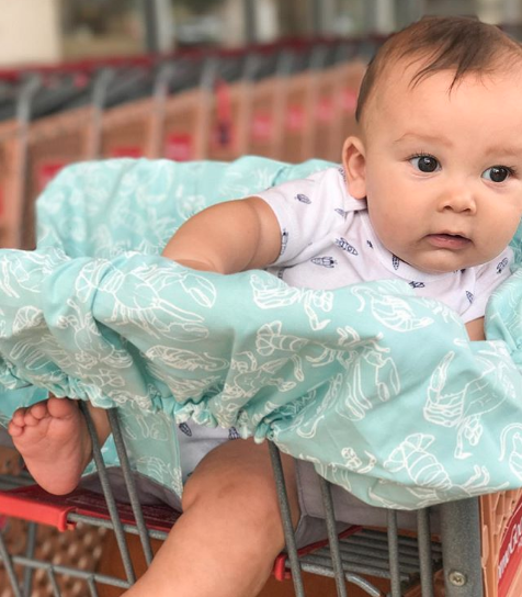 Pictured: Moss & Marsh  Shopping Cart Cover . Photo by Abravemess.com