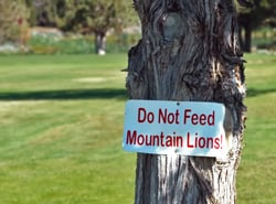03-likely-place-california-alturas-rv-park-campground-camping-golf-resort-restaurant-modoc-shasta-cascade.jpg