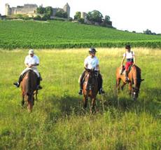 france-medoc-beach-horseback-ride-holidays-22.jpg