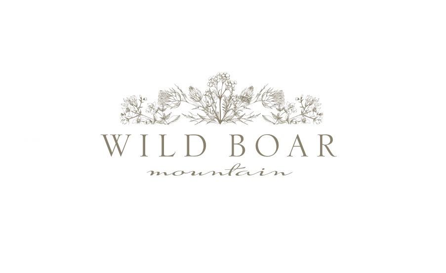 Wild Boar Mountain Logo